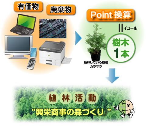 """有価物廃棄物→10Point=樹木1本 植林している樹種カラマツ 植林活動""""興栄商事の森づくり"""""""